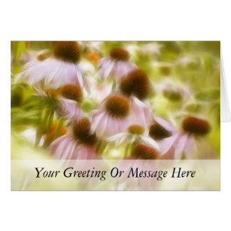 Coneflowers In The Morning Sun Greeting Cards