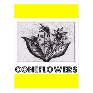 Coneflowers Postcards