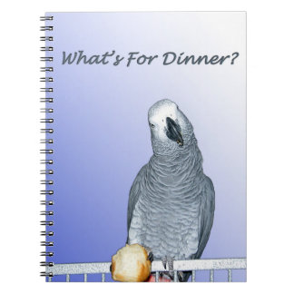 Congo African Grey dinner notebook