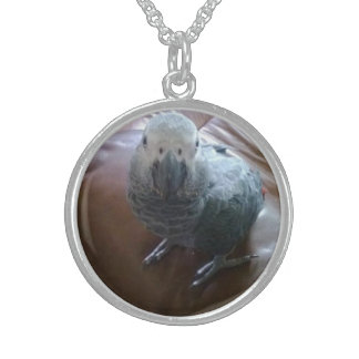 Congo African Grey lover's necklace