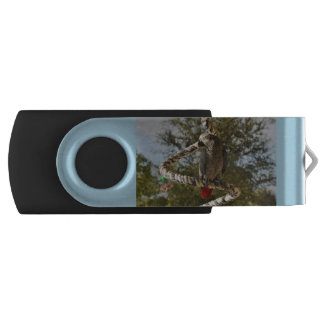 Congo African Grey on a Swing Swivel USB 3.0 Flash Drive
