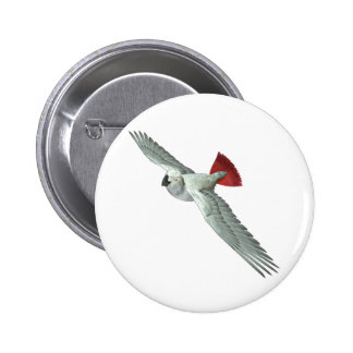 Congo African Grey Parrot Buttons