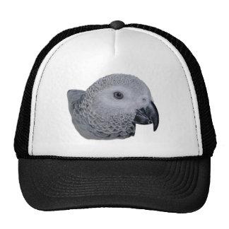Congo African Grey parrot Cap