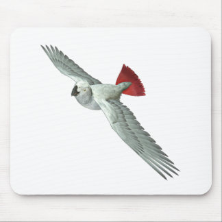 Congo African Grey Parrot Mouse Pad