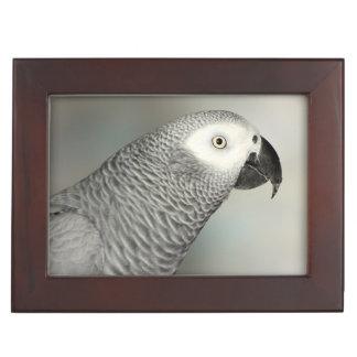 Congo African Grey Parrot Keepsake Box