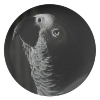 Congo African Grey Parrot Plates