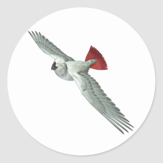 Congo African Grey Parrot Round Stickers