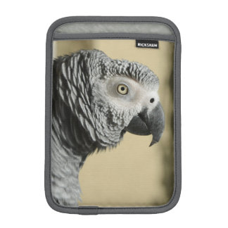 Congo African Grey Parrot with Ruffled Feathers iPad Mini Sleeve