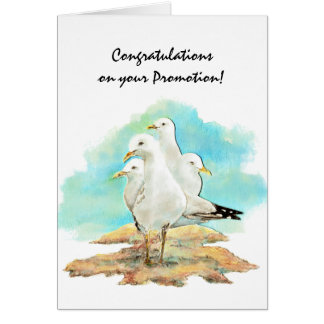 Congratulation Promotion From Gang Seagulls, bird Card
