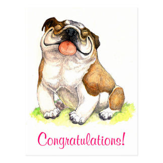 Congratulations Bulldog Puppy  Greeting Postcard