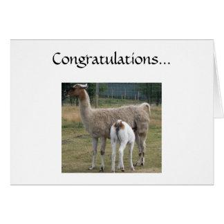 Congratulations... Card