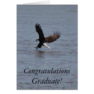 Congratulations Graduate ~ Bald Eagle Greeting Card