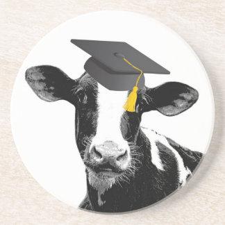 Congratulations Graduation Funny Cow in Cap Beverage Coaster