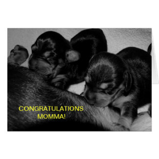 CONGRATULATIONS MOMMA! CARD