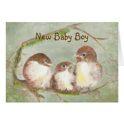 Congratulations New Baby Boy Cute Bird Family Greeting Cards