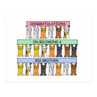 Congratulations on becoming a big brother. postcard