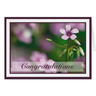 Congratulations - Pink Wood Sorrel Greeting Card