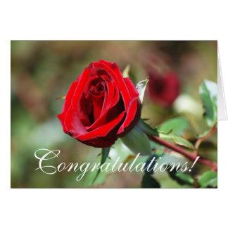 Congratulations Red Rose Card