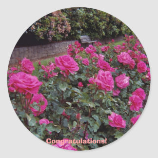 Congratulations! Round Sticker