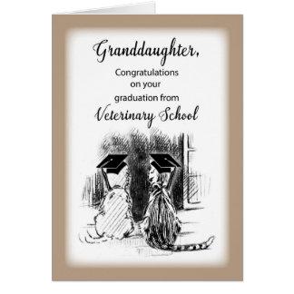 Congratulations to Granddaughter on Veterinary Sch Card