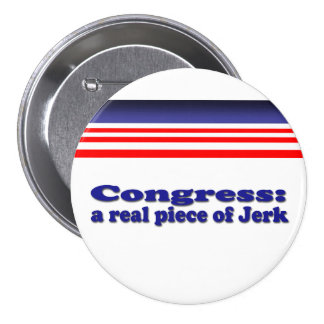 Congress Pinback Button