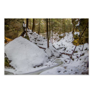 Conkle's Hollow in Winter Poster