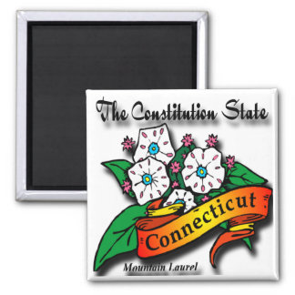Conn Mountain Laurel Constitution State Square Magnet