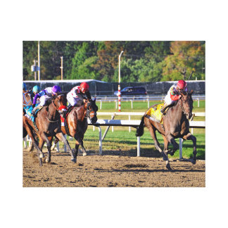 Connect, Pennslyvania Derby Winner Canvas Print