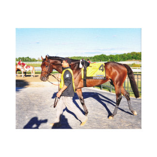 Connect - Pennsylvania Derby Winner Canvas Print