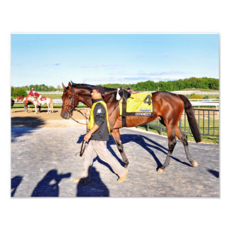 Connect - Pennsylvania Derby Winner Photo Print