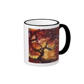 Connecticut: Darien, Japanese maple 'Acer Coffee Mug