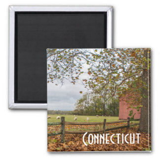 Connecticut Fall Farm Magnet