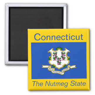 Connecticut Flag Magnet
