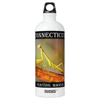 Connecticut Praying Mantis Water Bottle