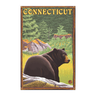 ConnecticutBlack Bear in Forest Canvas Prints