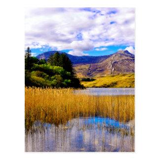Connemara Postcard