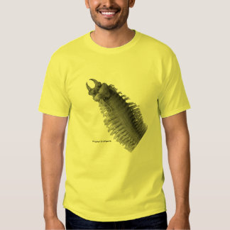 Conqueror Worm T-Shirt