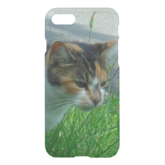 Conquest Kitty Hunting iPhone 7 Case