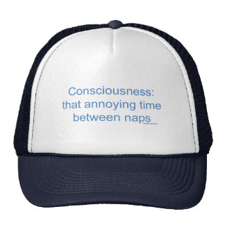 Consciousness: that annoying time between naps cap