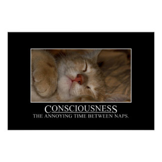 Consciousness: the annoying time between naps [XL] Poster