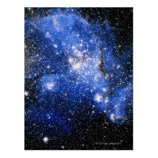 Constellation Tucana Postcard