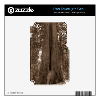 Contemplating Greatness iPod Touch 4G Skin