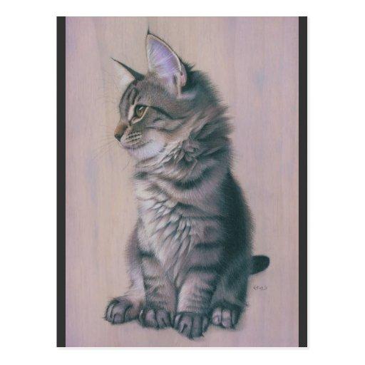 Contemplating Mischief Post Cards