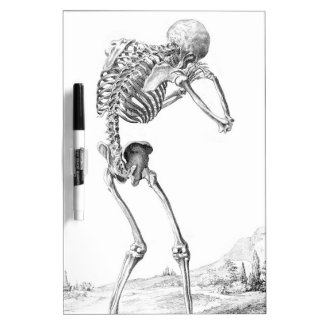 Contemplative Skelton Dry Erase Whiteboard