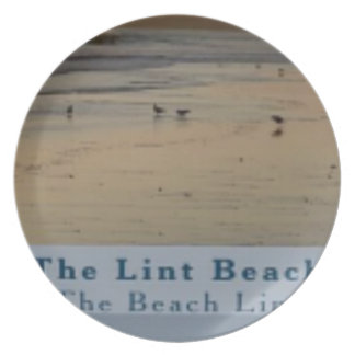 content The Lint Beach TLB Plate