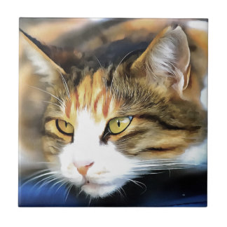 Contented Cat Ceramic Tile