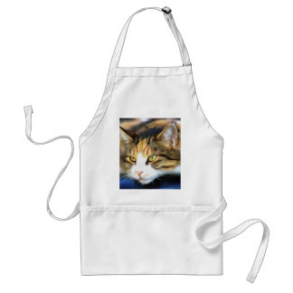Contented Cat Standard Apron