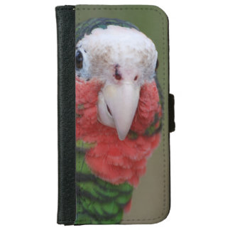 Conure Bird iPhone 6 Wallet Case