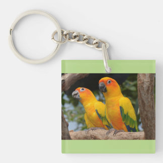 Conures Key Chain