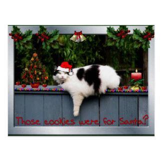 Cookie Loving Cat Postcard